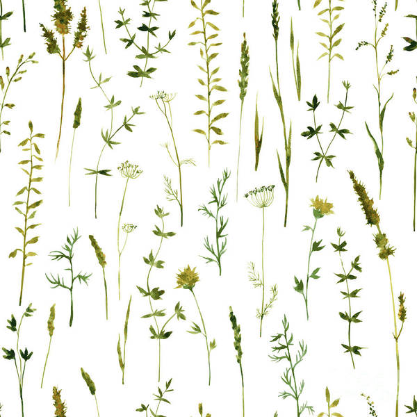 Herbal Wall Art - Digital Art - Vector Seamless Pattern With by Cat arch angel
