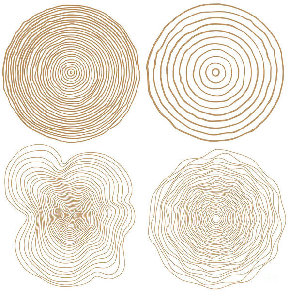 Vector Digital Art - Vector Tree Rings Background And Saw by Tigerstrawberry