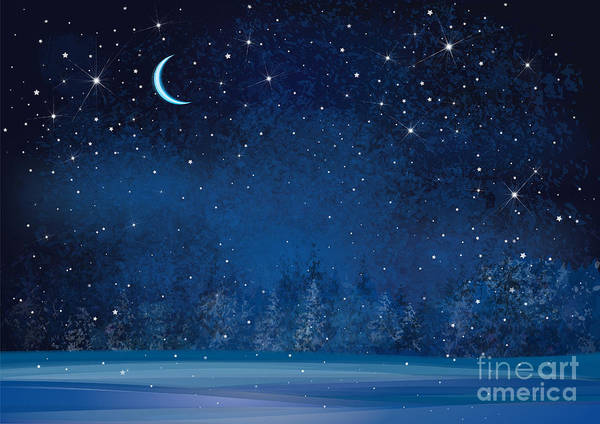Wall Art - Digital Art - Vector Winter Wonderland Night by Rvika