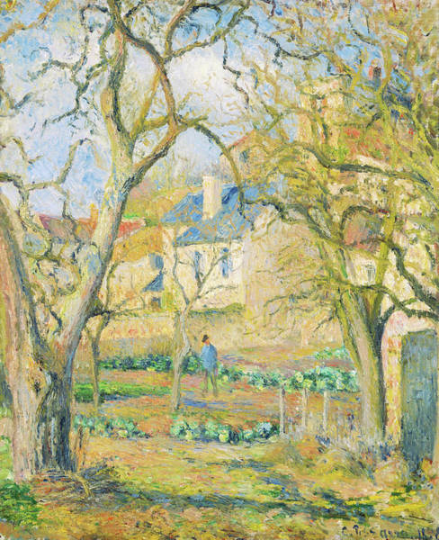 Wall Art - Painting - Vegetable Garden - Digital Remastered Edition by Camille Pissarro