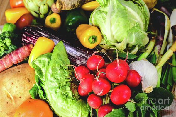 Photograph - Vegetables, Best Health Foods, Radishes, Onions, Garlic, Peppers, Cabbage, Broccoli. by Joaquin Corbalan