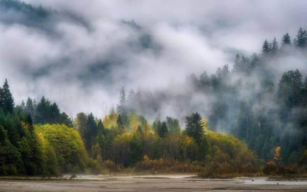 Dreary Photograph - Veiled Autumn by Thorsten Scheuermann