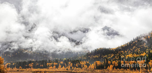 Photograph - Veiled Glory by Jim Garrison