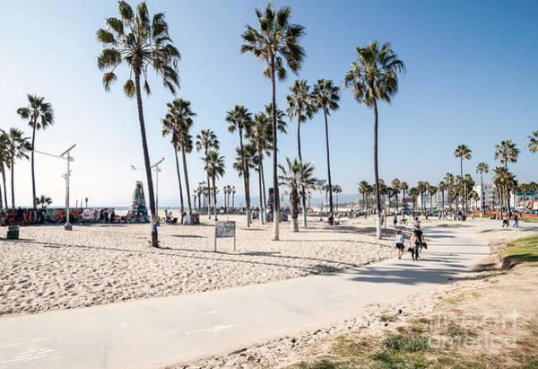 Wall Art - Photograph - Venice Beach, Los Angeles by Telesniuk