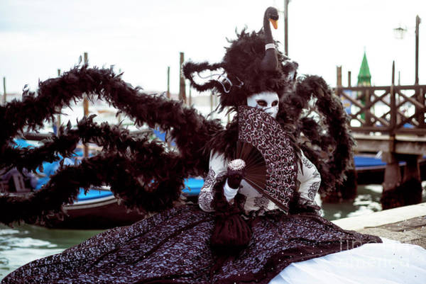 Photograph - Venice Black Swan At Carnival by John Rizzuto