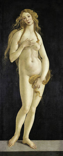 Sandro Botticelli Painting - Venus, 15th Century by Sandro Botticelli