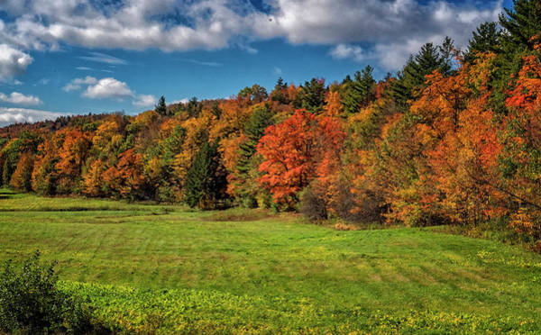 Photograph - Vermont Autumn Colors by Tom Singleton