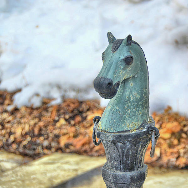 Photograph - Vermont Hitching Post  by JAMART Photography