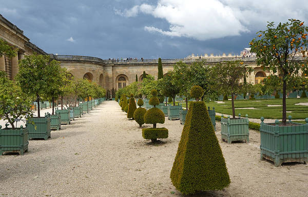 Photograph - Versailles 8 by Andrew Fare