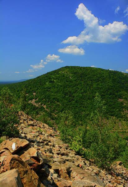 Photograph - Vertical Pa At Rocks Of Lehigh Gap by Raymond Salani III