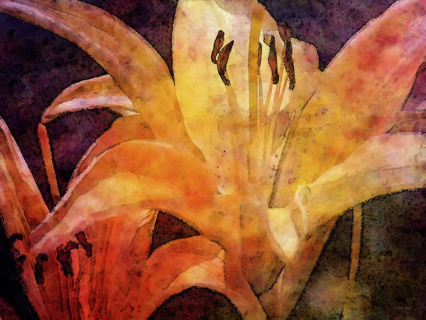 Photograph - Vibrant 1752 Idp_2 by Steven Ward