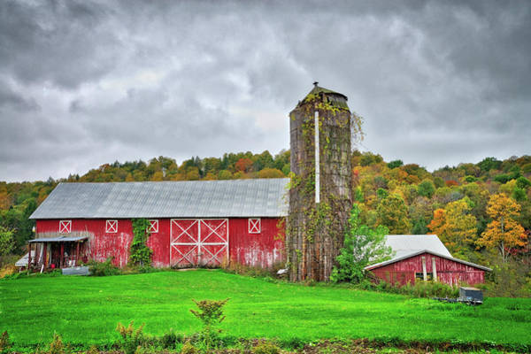 Photograph - Vibrant Farm Life In The Finger Lakes by Lynn Bauer