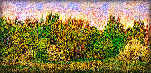 Digital Art - Vibrant Forest by Joel Bruce Wallach