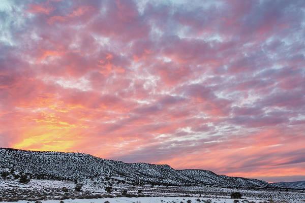 Photograph - Vibrant Sunset by Denise Bush
