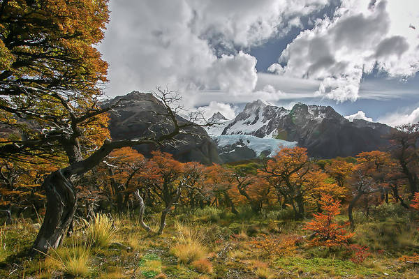 Patagonia Photograph - Vichuquen by Ryan Weddle
