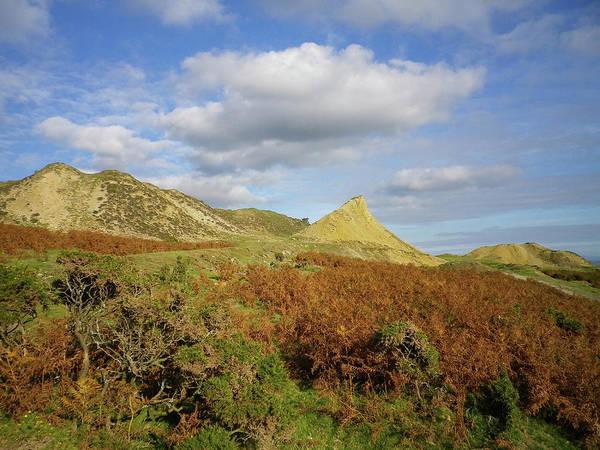 Wall Art - Photograph - Victorian Mine Dumps Kittows Shaft Caradon Hill Bodmin Moor Cornwall by Richard Brookes