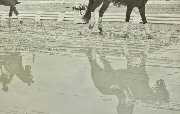 Photograph - Victory Gallop Showing by JAMART Photography