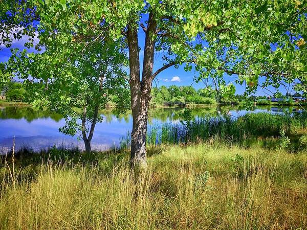 Photograph - Viele Lake 4 by Dan Miller