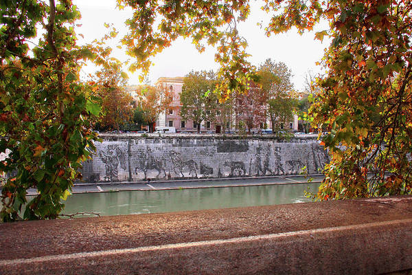 Photograph - View From Across The Tiber To Triumphs And Laments Commissioned Mural by Angela Rath