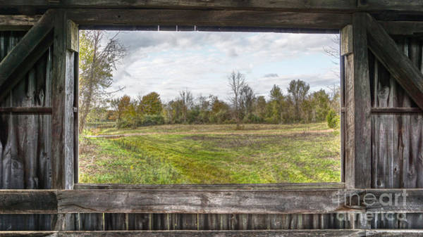 Photograph - View Into Ohio's Nature by Jeremy Lankford