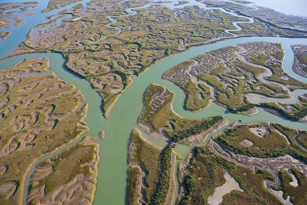 Marsh Grass Photograph - View Of Marshland Huelva Province by Peter Adams