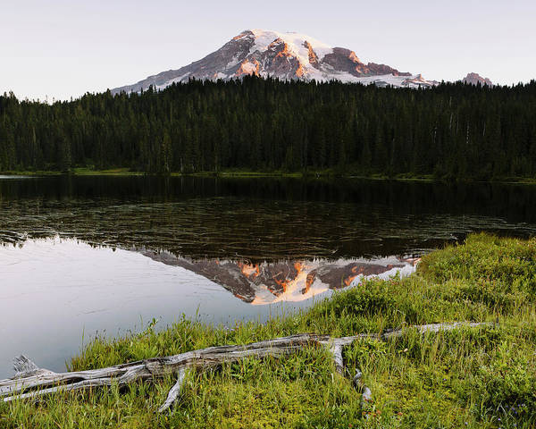 Wall Art - Photograph - View Of Mount Rainier From Reflection by Mint Images - Paul Edmondson