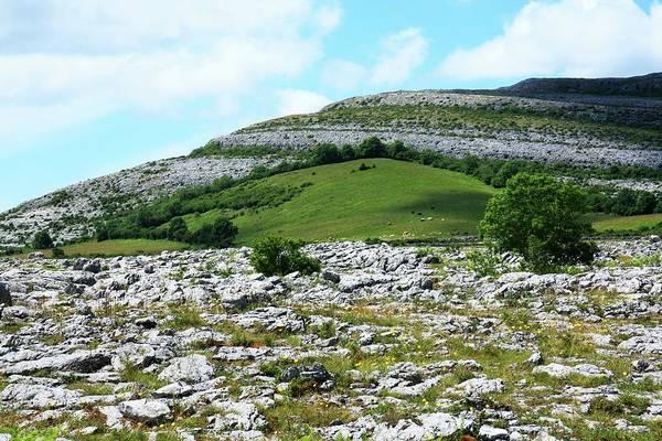 The Burren Photograph - View Of Rock Landscape by Design Pics