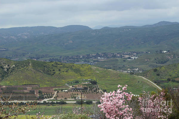 Photograph - View Of Simi Valley From Reagan Library Grounds 8 by Colleen Cornelius