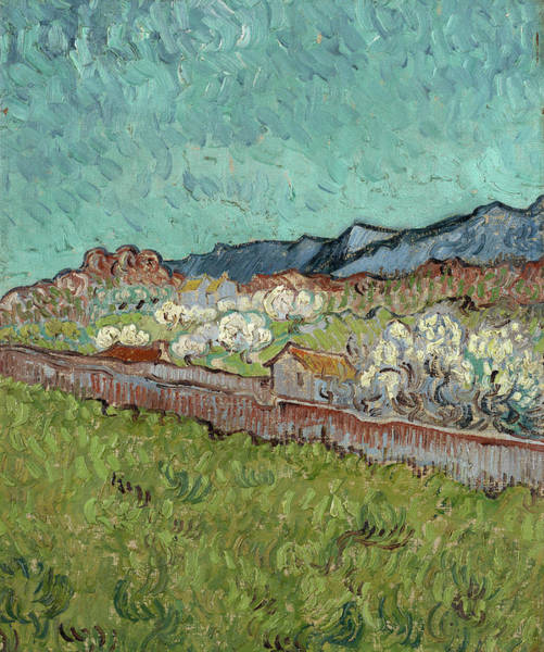 Wall Art - Painting - View Of The Alpilles by Vincent van Gogh