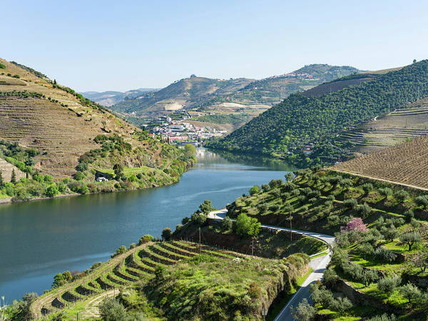 Douro Wall Art - Photograph - View Over River Douro Towards Village by Martin Zwick