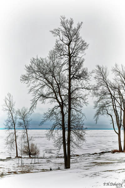 Great Lakes Region Wall Art - Digital Art - View To The Lake by Phill Doherty