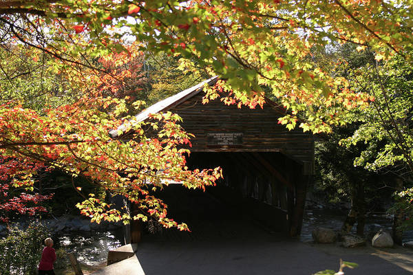 Photograph - Viewing The Albany Covered Bridge by Jeff Folger