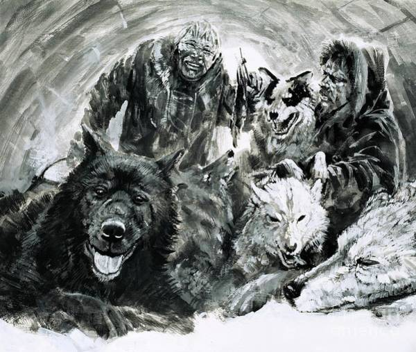 Arctic Wolf Painting - Vilhjalmar Stefansson Discovered Blond Eskimos by Graham Coton