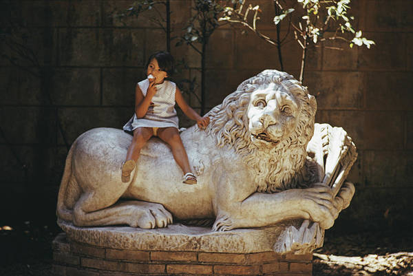 Villa Photograph - Villa Borghese Lion by Slim Aarons