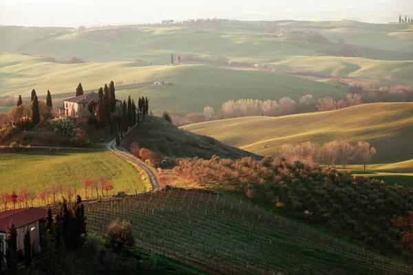 Villa Photograph - Villa In Tuscany by Dmitry Pisanko