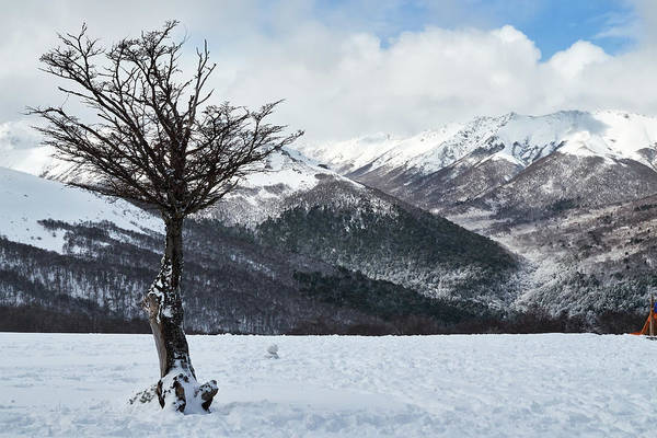 Photograph - Villa La Angostura, Neuquen, Patagonia Argentina by Fine Art Photography Prints By Eduardo Accorinti