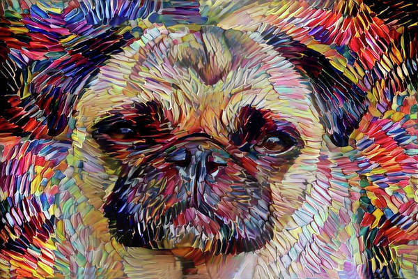 Digital Art - Vincent The Pug by Peggy Collins