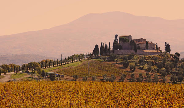 Wall Art - Photograph - Vineyard Castle In Tuscany by Rolphus