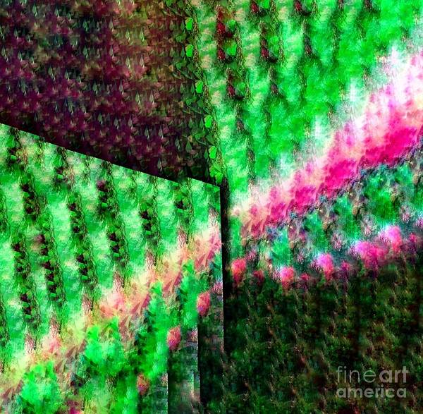 Wall Art - Photograph - Vineyard Gardens by Lisa Simmons
