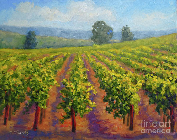 Painting - Vineyard In Springtime by Carolyn Jarvis
