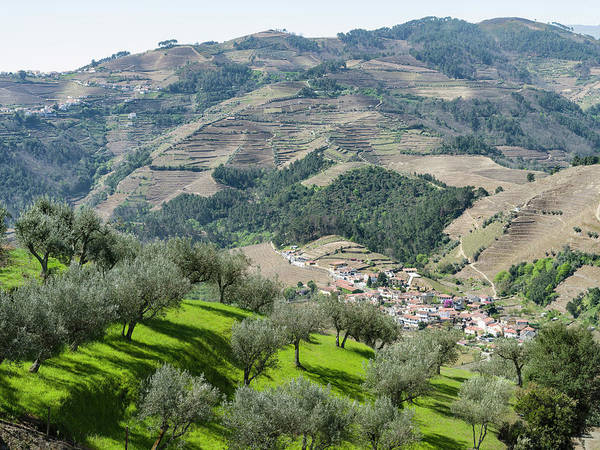 Douro Wall Art - Photograph - Vineyards And A Small Village by Martin Zwick