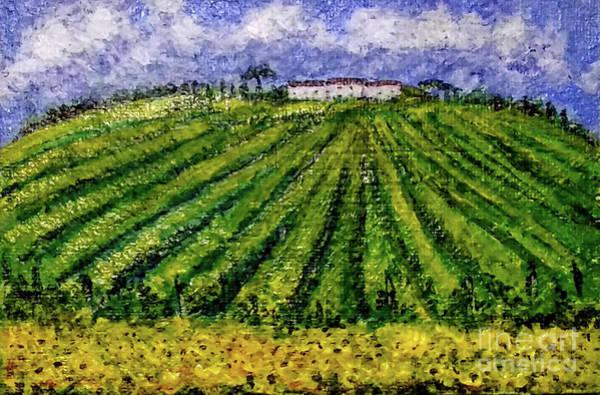 Painting - Vineyards Of Tuscany by Asha Sudhaker Shenoy
