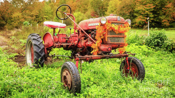 Wall Art - Photograph - Vintage 1962 Farmall Cub Farm Tractor Autumn Grantham Nh by Edward Fielding