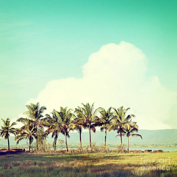 Wall Art - Photograph - Vintage Beach Palms by Sundari