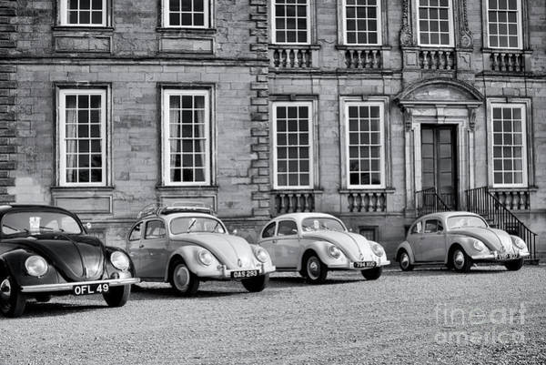 Wall Art - Photograph - Vintage Beetles by Tim Gainey