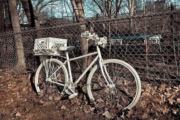 Photograph - Vintage Bicycle by Joann Vitali