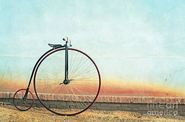 Wall Art - Photograph - Vintage Bicycle, Penny Farthing,high by Unclepepin