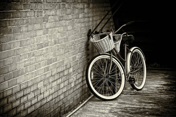 Wall Art - Photograph - Vintage Bicycles by Carol Fox Henrichs