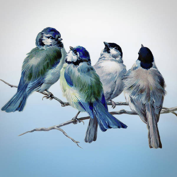 Wall Art - Mixed Media - Vintage Bluebirds by Amanda Lakey