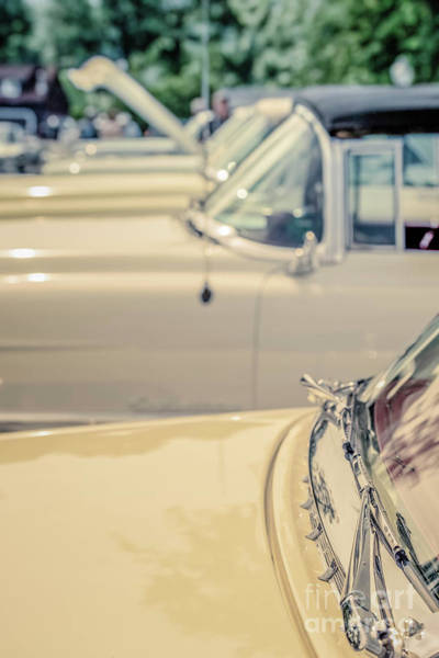 Wall Art - Photograph - Vintage Cadillac Cars by Edward Fielding